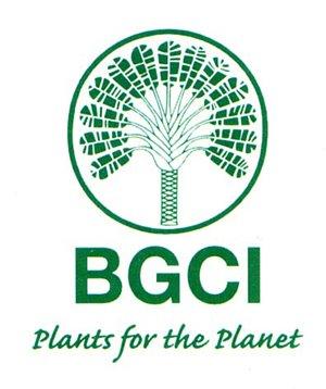 BGCI - Featuring Storey, Footprints - words & music by Arron Storey